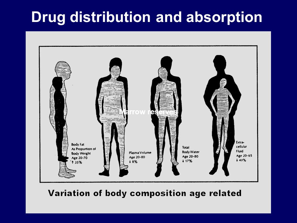 Drug distribution and absorption