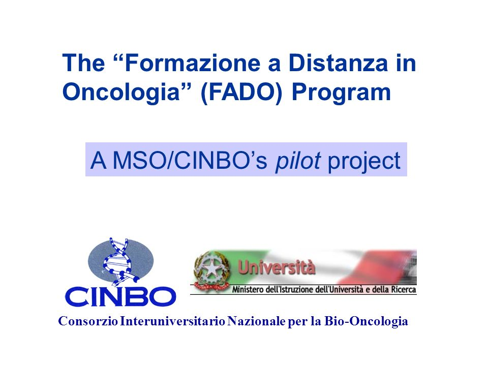 The Formazione a Distanza in Oncologia (FADO) Program