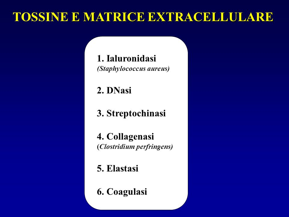 TOSSINE E MATRICE EXTRACELLULARE