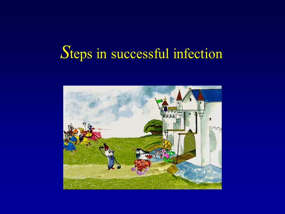 Steps in successful infection