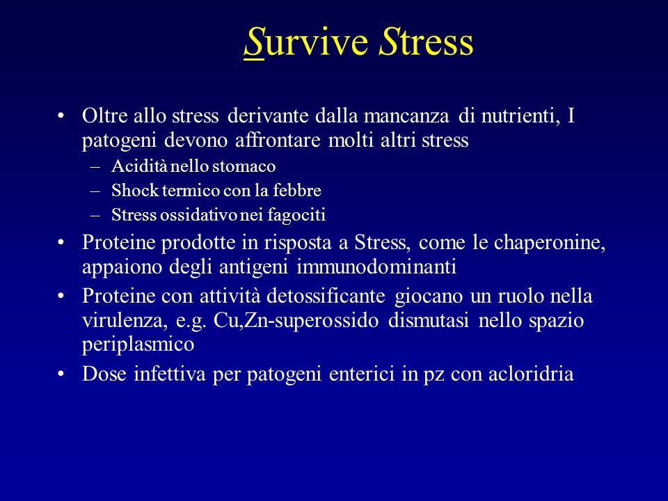 Survive Stress Oltre allo stress derivante dalla mancanza di nutrienti, I patogeni devono affrontare molti altri stress.