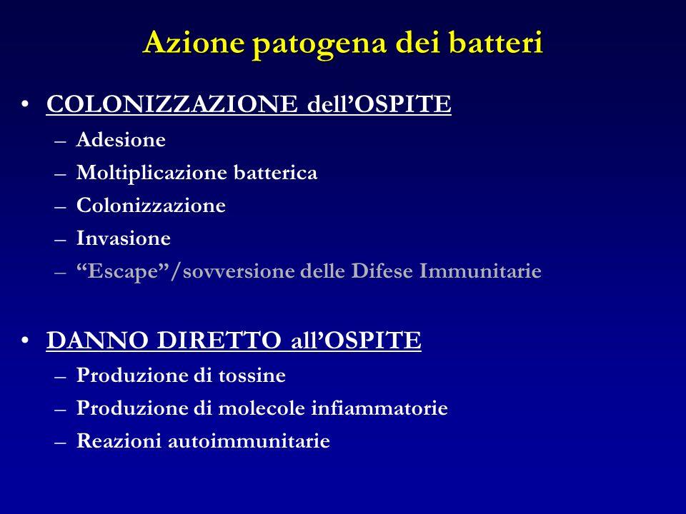 Azione patogena dei batteri