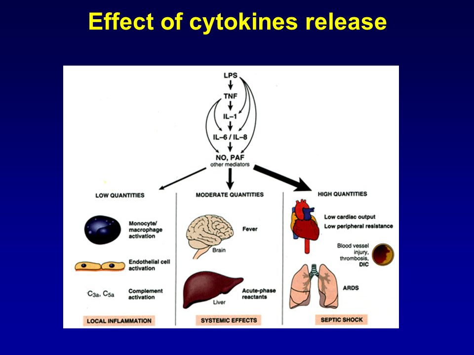 Effect of cytokines release