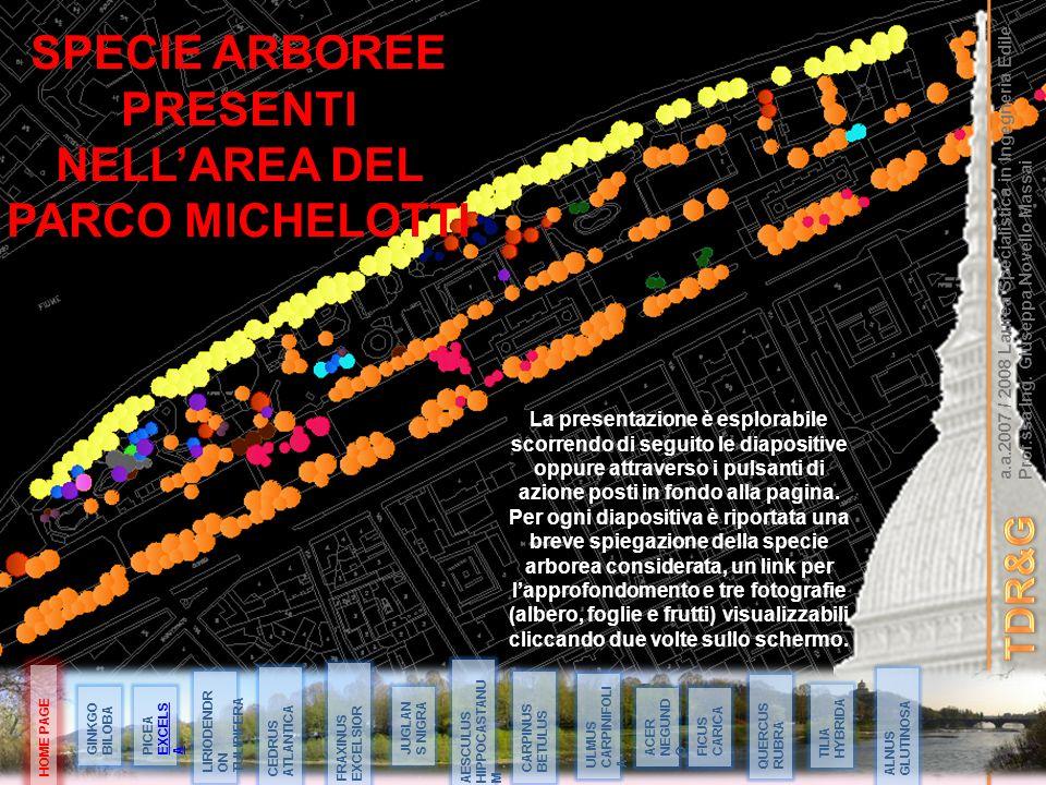 SPECIE ARBOREE PRESENTI NELL'AREA DEL PARCO MICHELOTTI