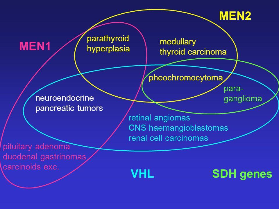 MEN2 MEN1 VHL SDH genes parathyroid medullary hyperplasia