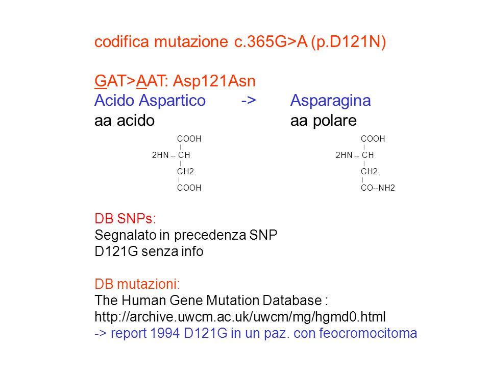codifica mutazione c.365G>A (p.D121N) GAT>AAT: Asp121Asn