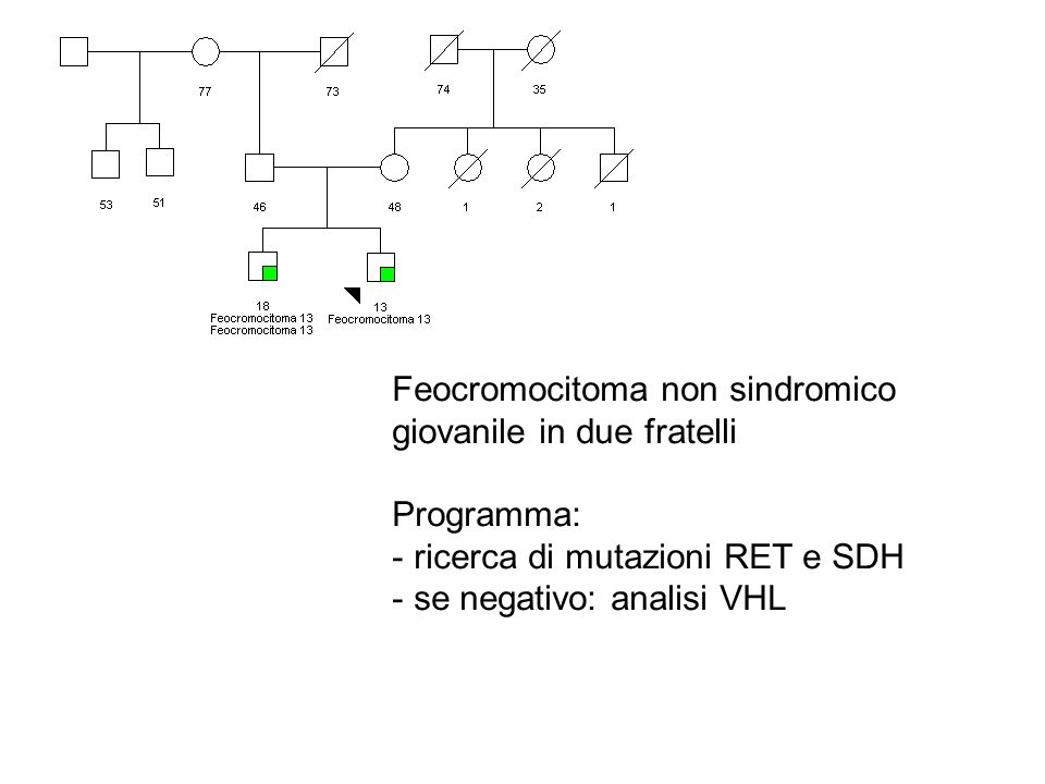 Feocromocitoma non sindromico giovanile in due fratelli Programma: