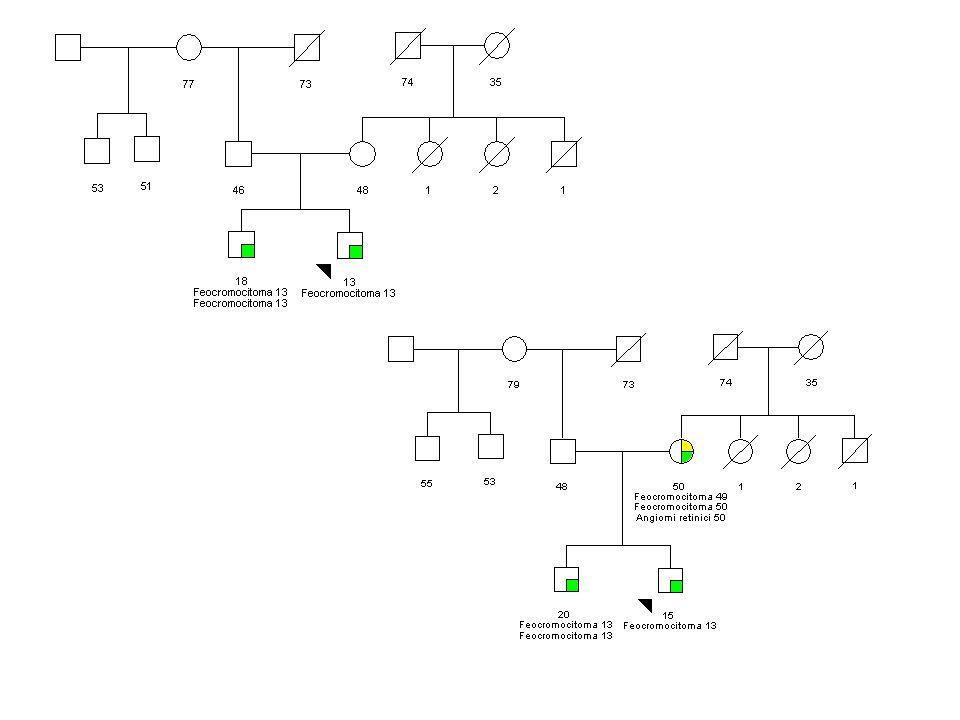 Nel frattempo cambia l'aspetto della famiglia e passiamo all'analisi VHL