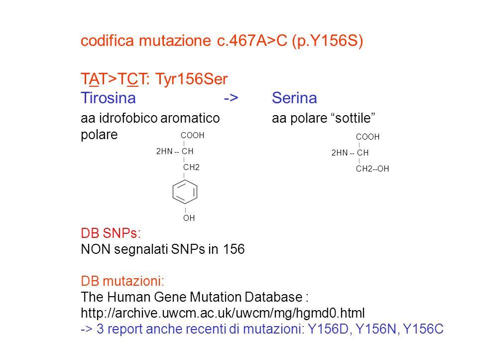 codifica mutazione c.467A>C (p.Y156S) TAT>TCT: Tyr156Ser