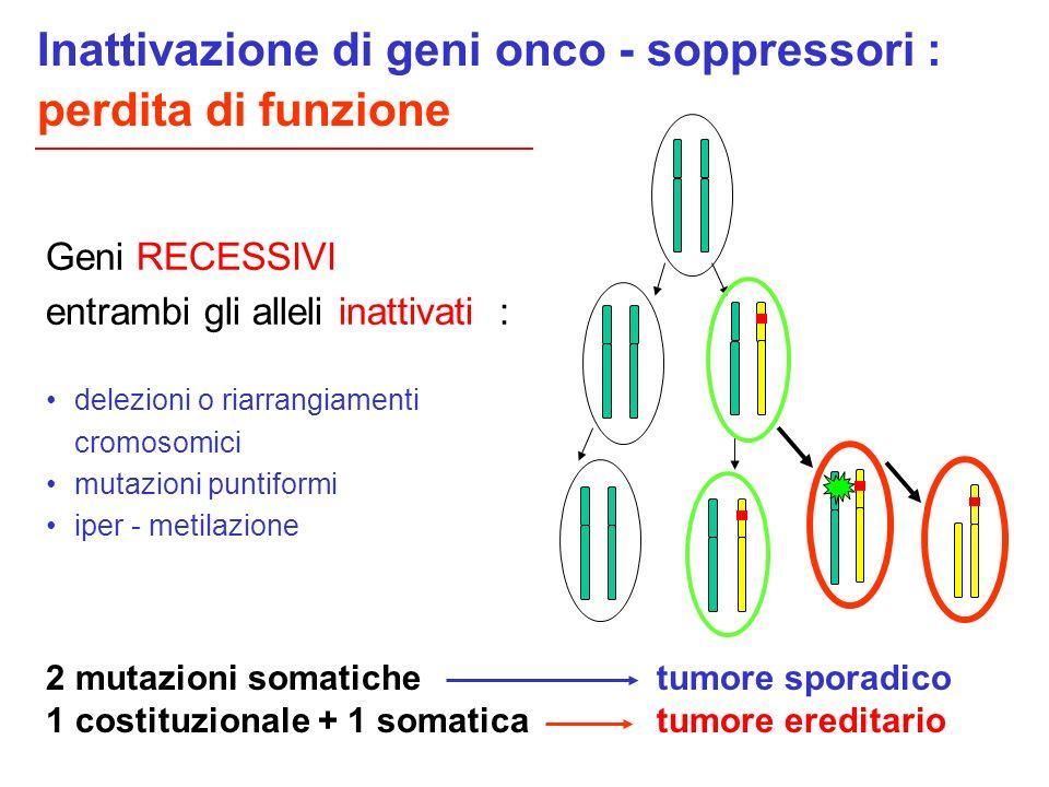 Inattivazione di geni onco - soppressori : perdita di funzione