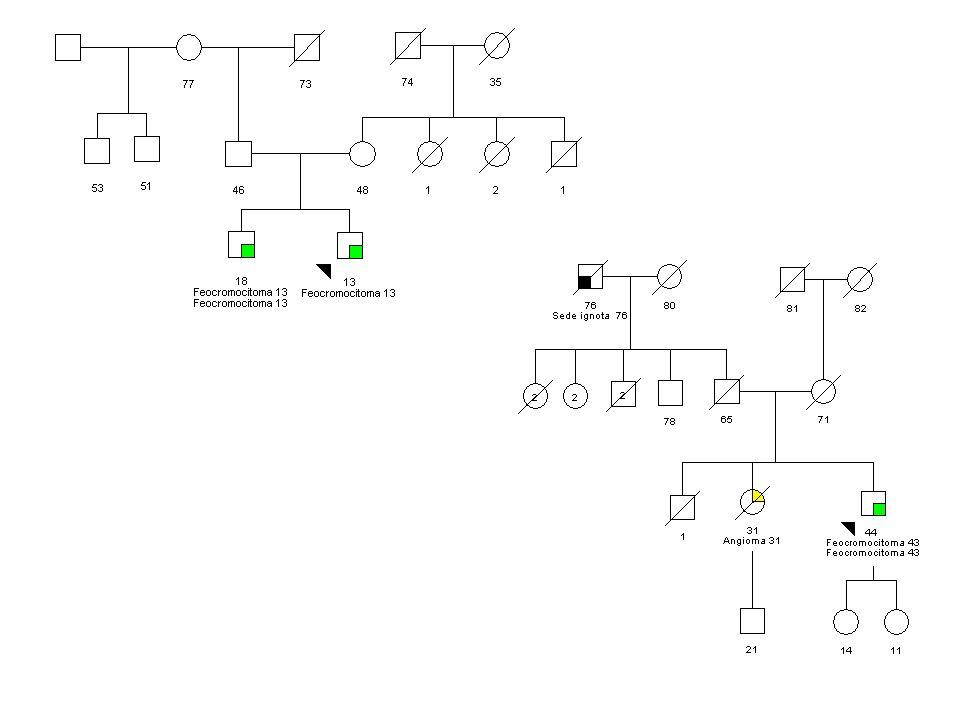 Vengono proposti due alberi genealogici con feocromocitoma bilaterale e/o famigliare commentando gli aspetti suggestivi di predisposizione
