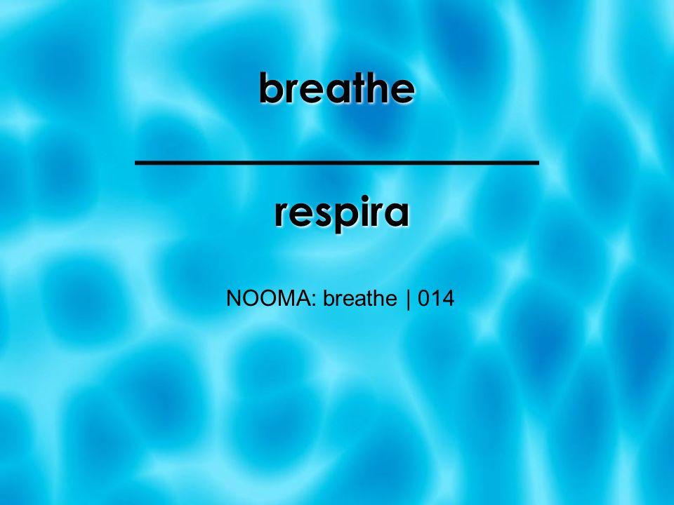 breathe respira NOOMA: breathe | 014