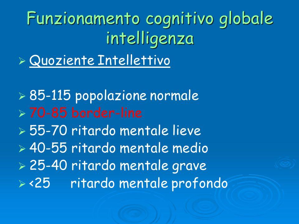 Funzionamento cognitivo globale intelligenza