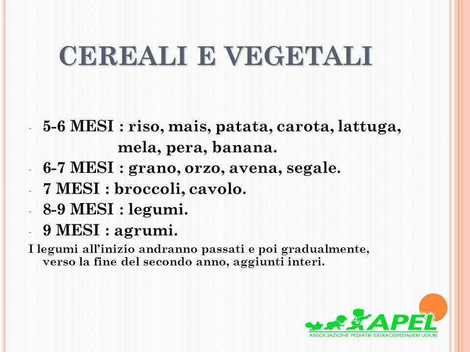 CEREALI E VEGETALI 5-6 MESI : riso, mais, patata, carota, lattuga,