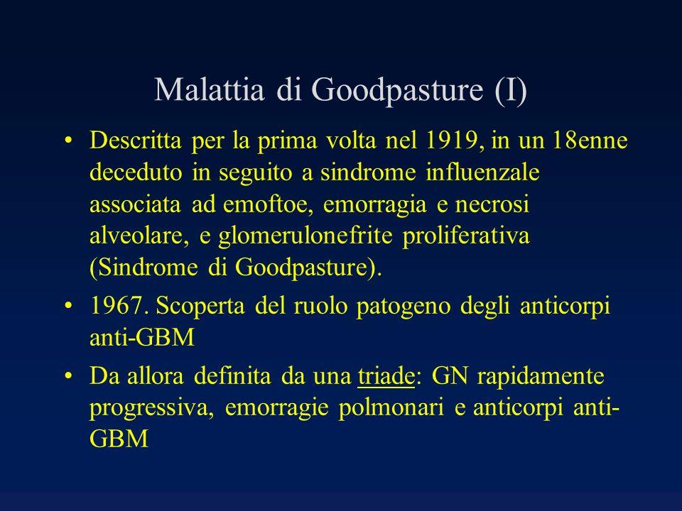 Malattia di Goodpasture (I)