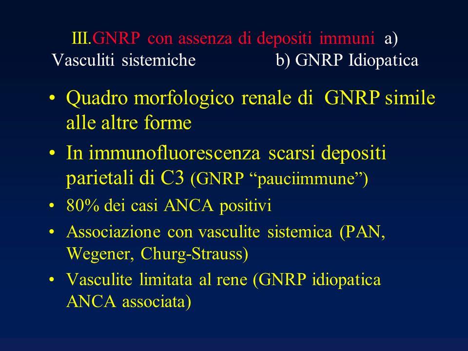 Quadro morfologico renale di GNRP simile alle altre forme