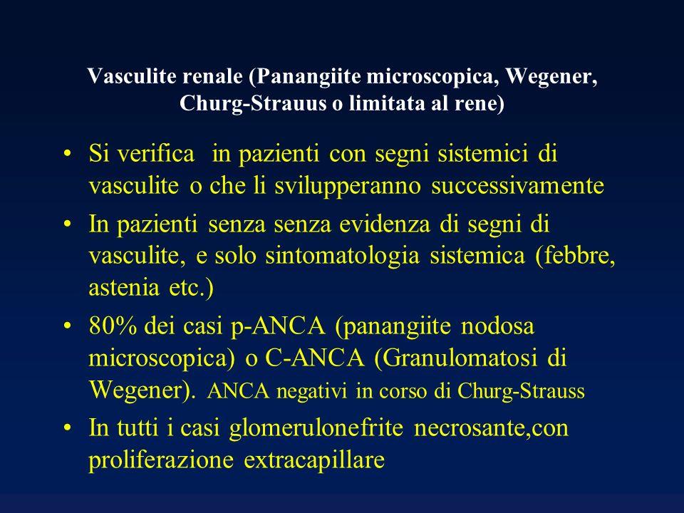Vasculite renale (Panangiite microscopica, Wegener, Churg-Strauus o limitata al rene)