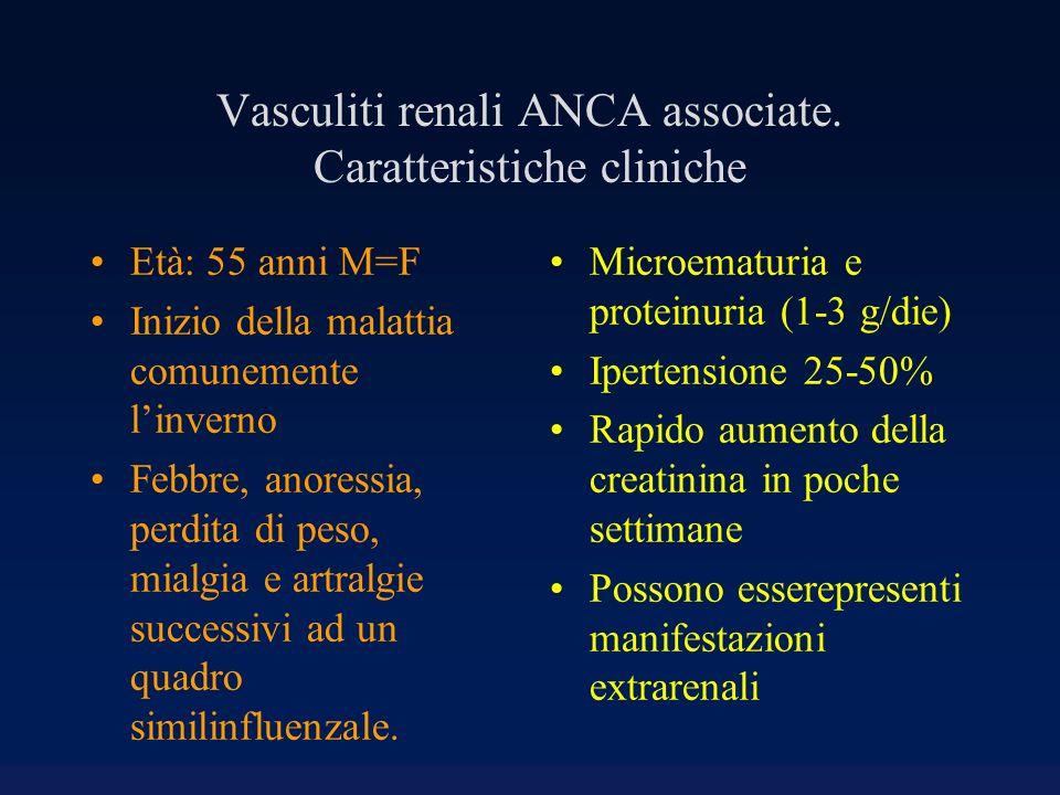 Vasculiti renali ANCA associate. Caratteristiche cliniche