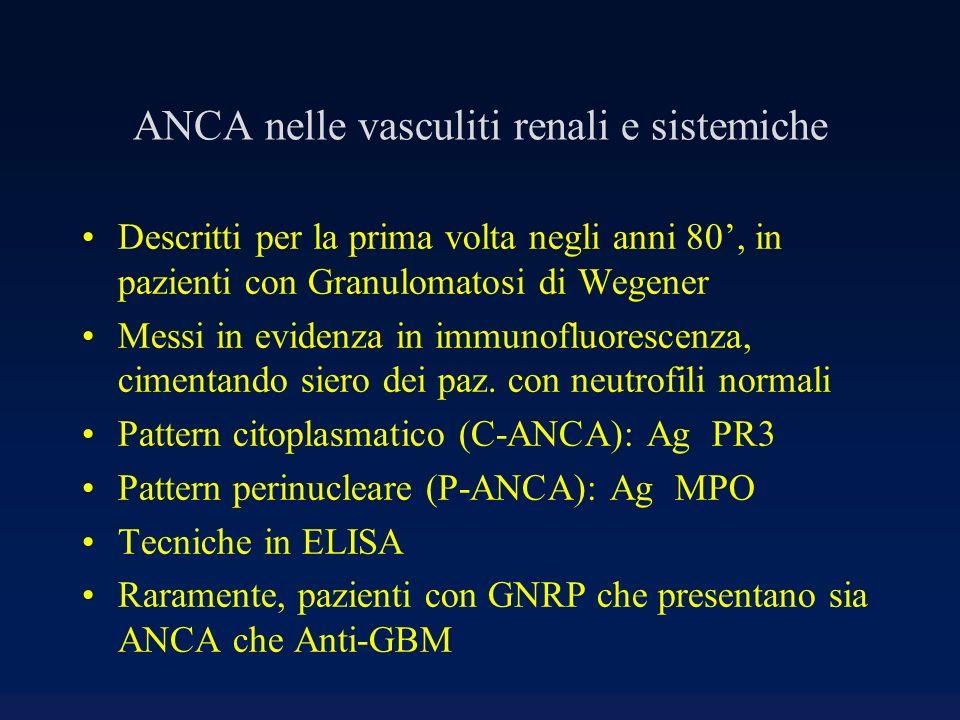 ANCA nelle vasculiti renali e sistemiche