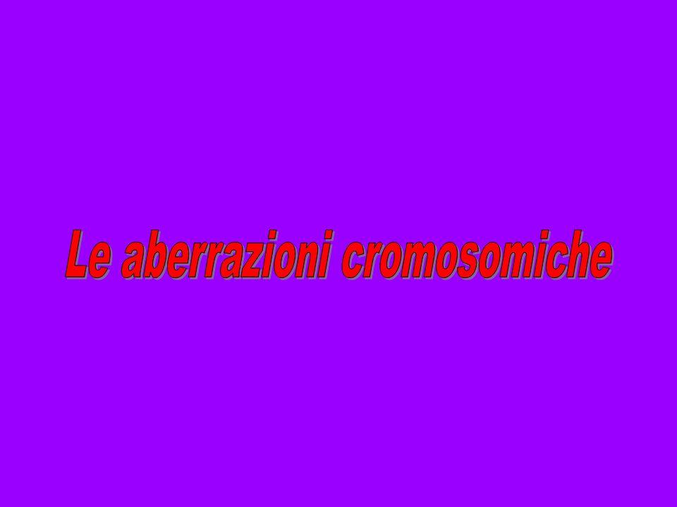 Le aberrazioni cromosomiche