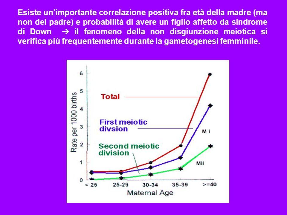 Esiste un'importante correlazione positiva fra età della madre (ma non del padre) e probabilità di avere un figlio affetto da sindrome di Down  il fenomeno della non disgiunzione meiotica si verifica più frequentemente durante la gametogenesi femminile.