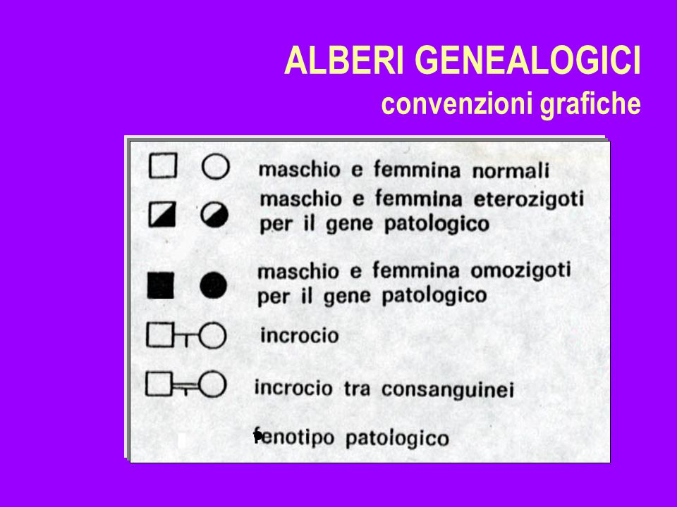 ALBERI GENEALOGICI convenzioni grafiche