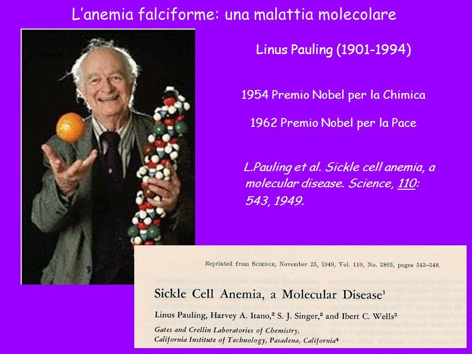 L'anemia falciforme: una malattia molecolare