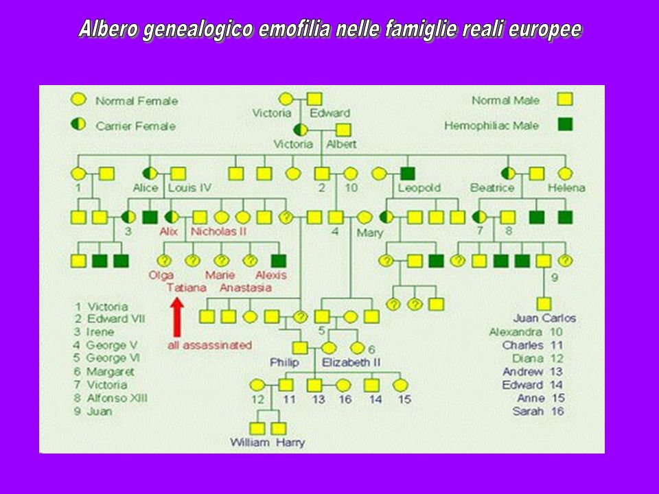 Albero genealogico emofilia nelle famiglie reali europee