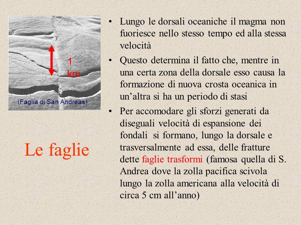 Lungo le dorsali oceaniche il magma non fuoriesce nello stesso tempo ed alla stessa velocità