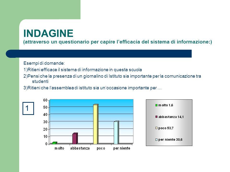 INDAGINE (attraverso un questionario per capire l'efficacia del sistema di informazione:)