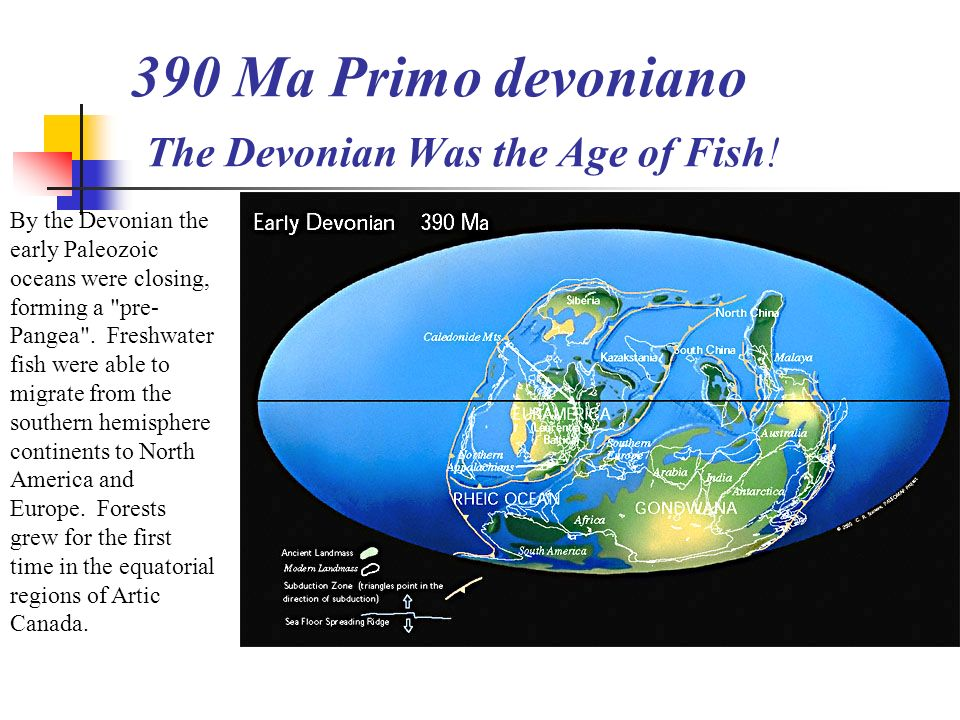 390 Ma Primo devoniano The Devonian Was the Age of Fish!