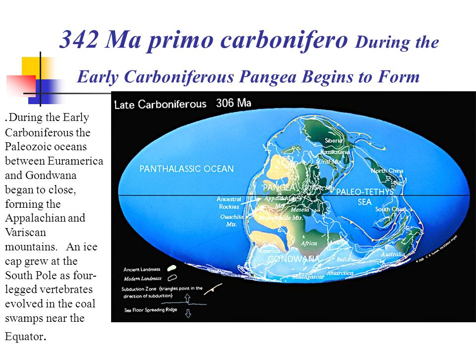 342 Ma primo carbonifero During the Early Carboniferous Pangea Begins to Form