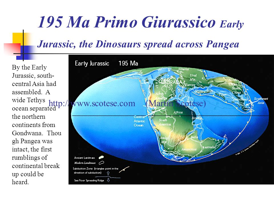 195 Ma Primo Giurassico Early Jurassic, the Dinosaurs spread across Pangea