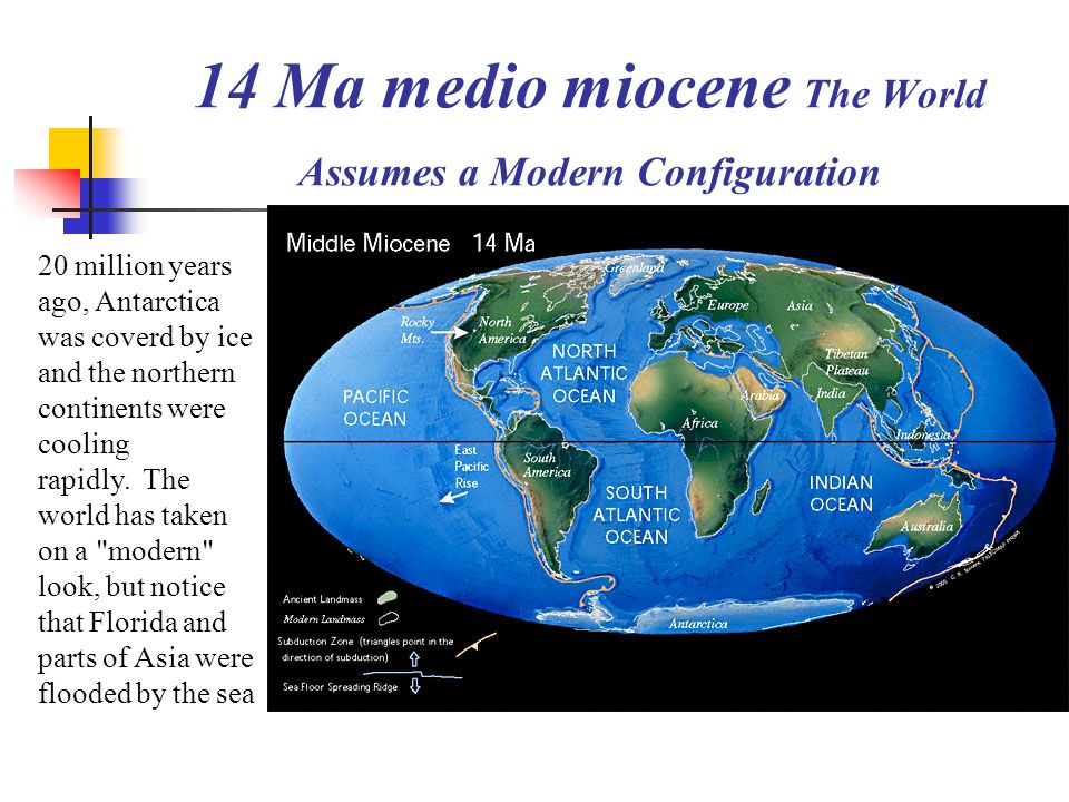 14 Ma medio miocene The World Assumes a Modern Configuration