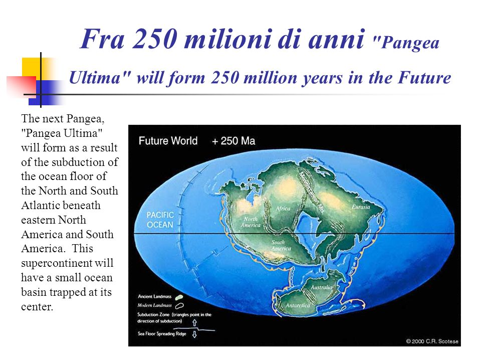 Fra 250 milioni di anni Pangea Ultima will form 250 million years in the Future