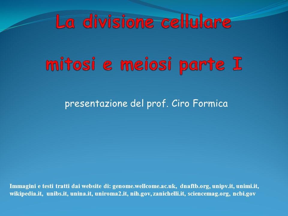 La divisione cellulare mitosi e meiosi parte I