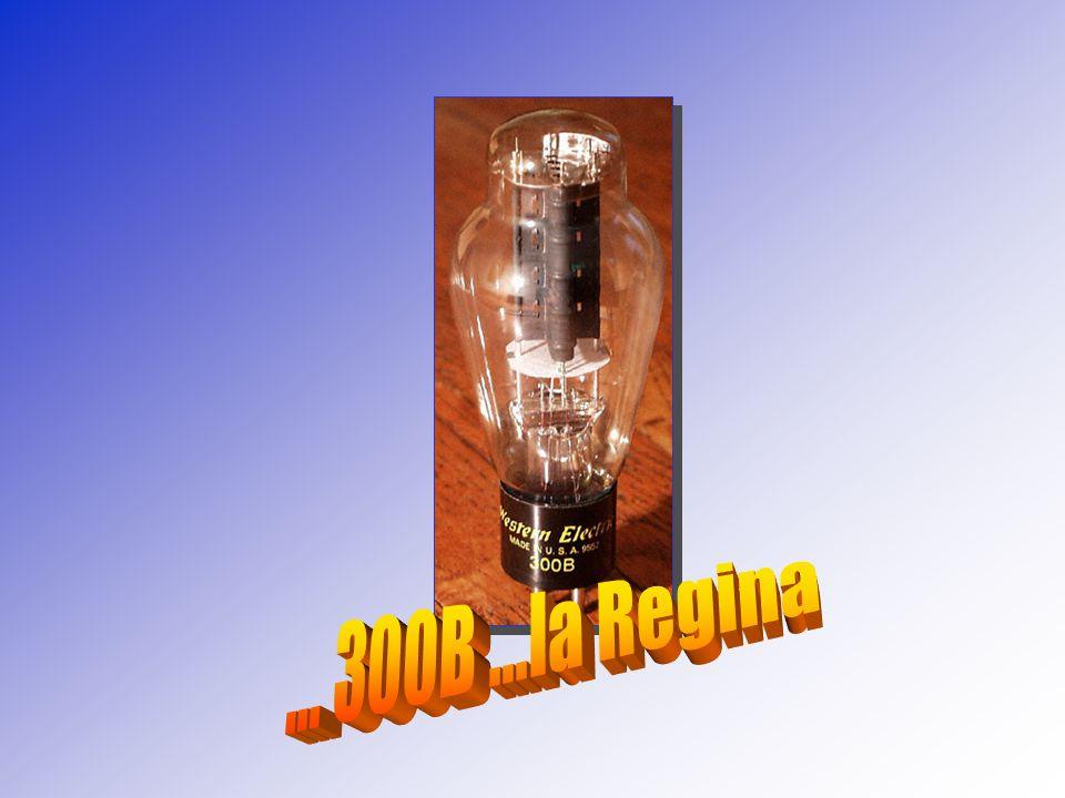 ... 300B ...la Regina