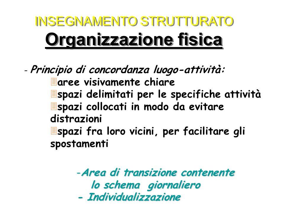 INSEGNAMENTO STRUTTURATO Organizzazione fisica