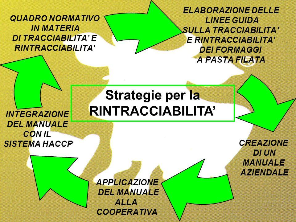 Strategie per la RINTRACCIABILITA'