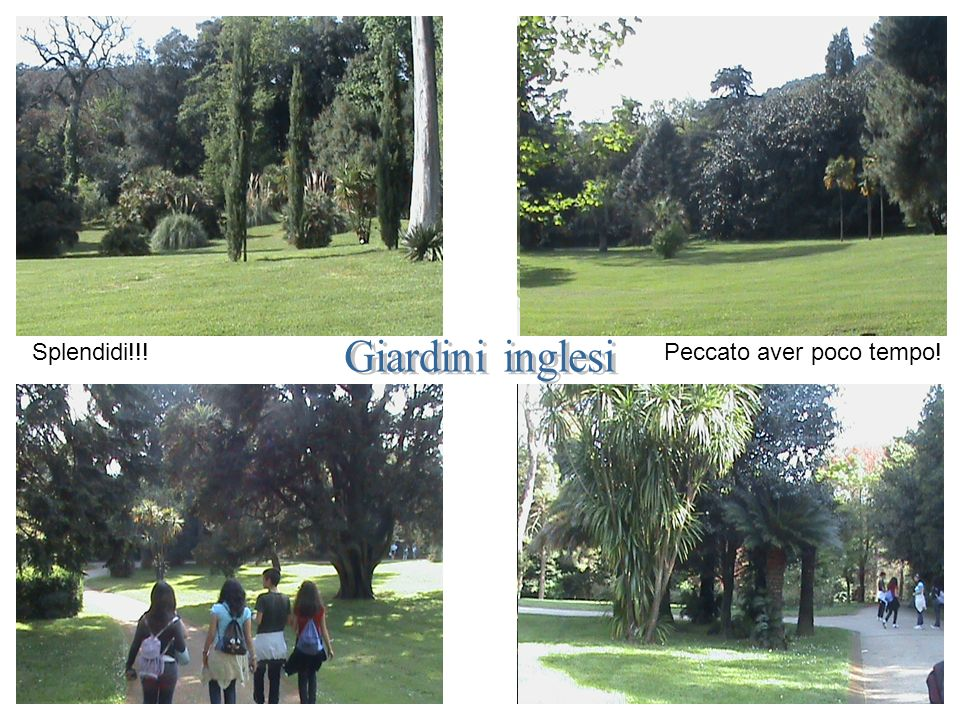 Splendidi!!! Peccato aver poco tempo! Giardini inglesi