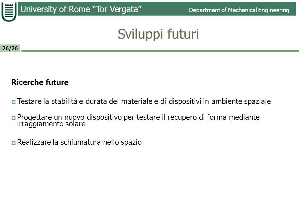 Sviluppi futuri Ricerche future