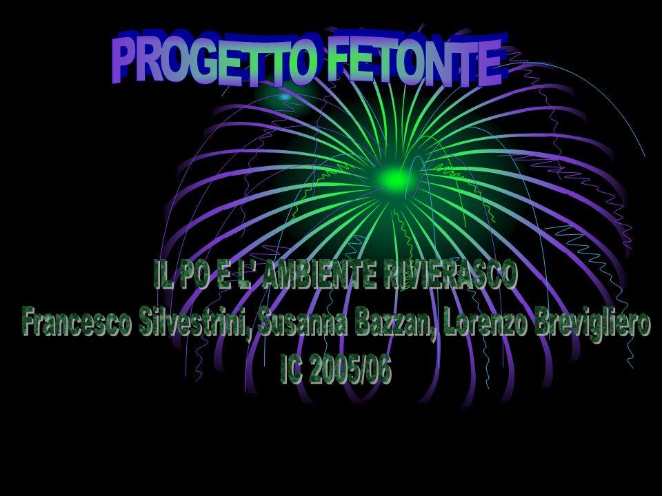 PROGETTO FETONTE IL PO E L AMBIENTE RIVIERASCO