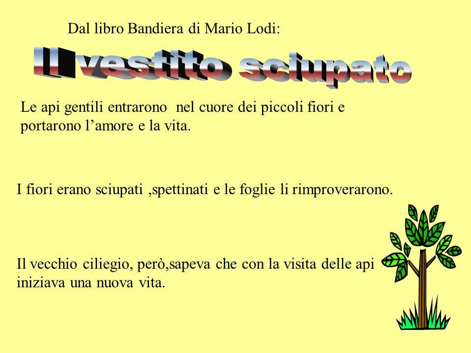 Il vestito sciupato Dal libro Bandiera di Mario Lodi: