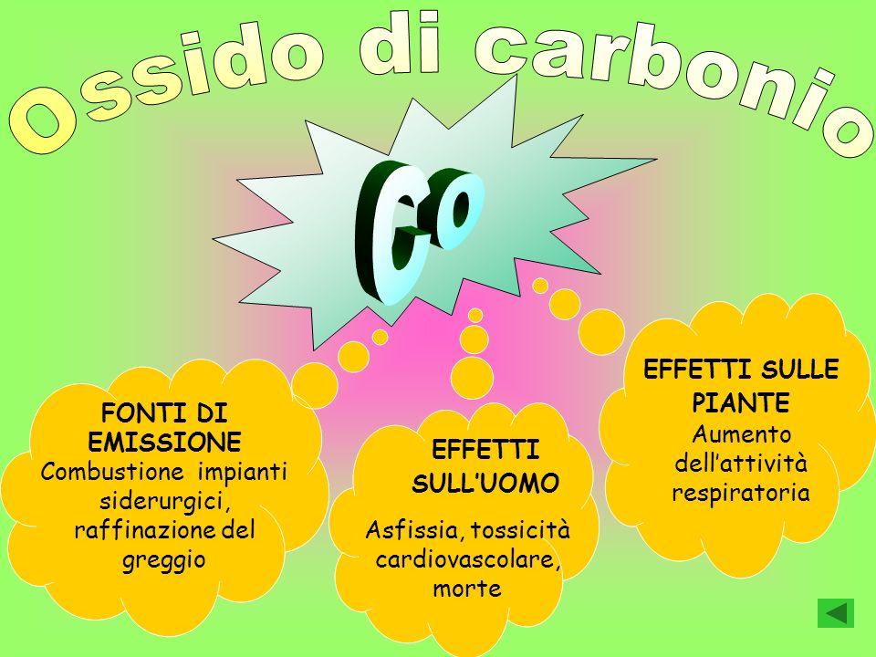Ossido di carbonio Co. EFFETTI SULLE PIANTE Aumento dell'attività respiratoria.