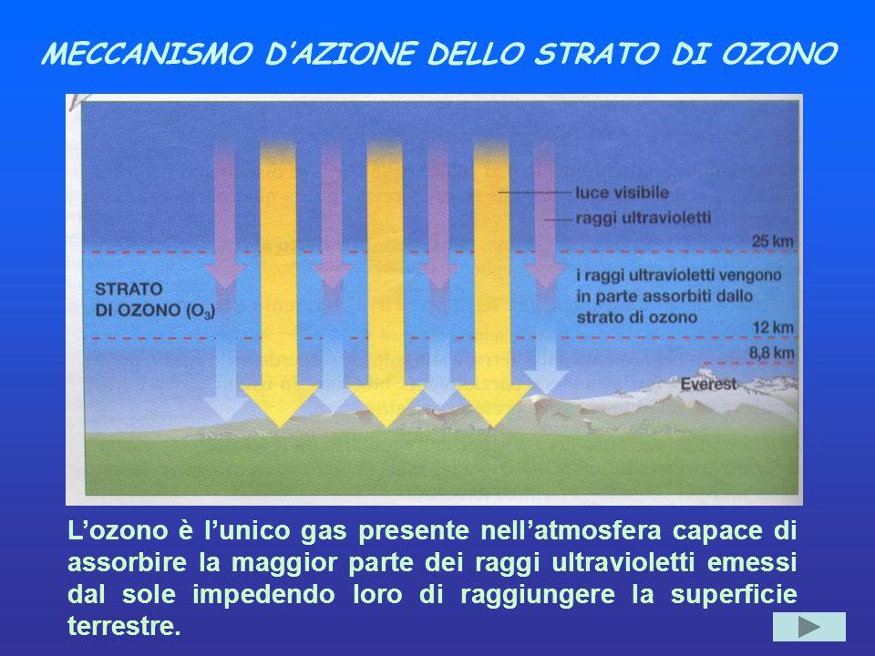 MECCANISMO D'AZIONE DELLO STRATO DI OZONO