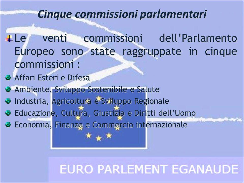 Cinque commissioni parlamentari