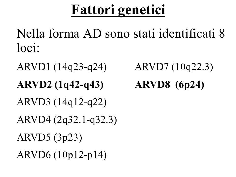 Fattori genetici Nella forma AD sono stati identificati 8 loci: