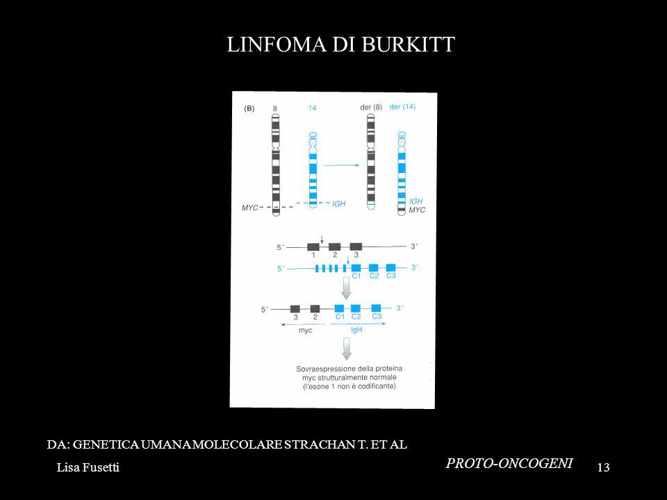 LINFOMA DI BURKITT PROTO-ONCOGENI
