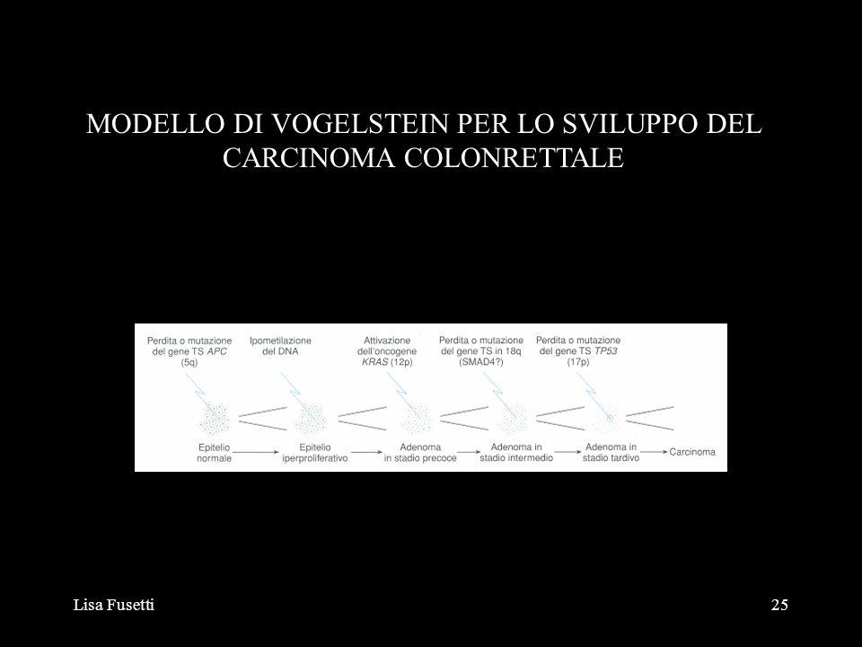 MODELLO DI VOGELSTEIN PER LO SVILUPPO DEL CARCINOMA COLONRETTALE