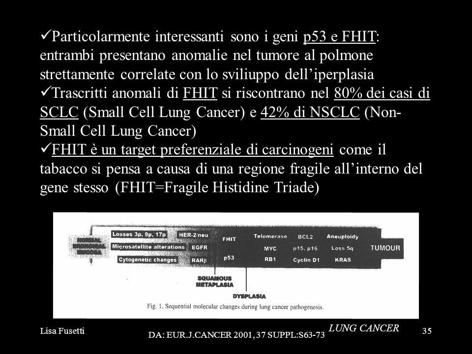 Particolarmente interessanti sono i geni p53 e FHIT: entrambi presentano anomalie nel tumore al polmone strettamente correlate con lo sviliuppo dell'iperplasia